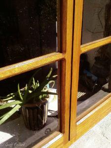 buckland oak windows web